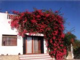 SH397 Four bedroom cortijo in Burjulu, Almeria